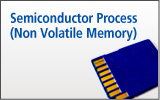 Semiconductor Process (Non Volatile Memory)